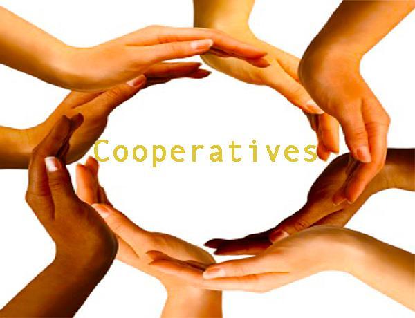 creer-cooperative-maroc